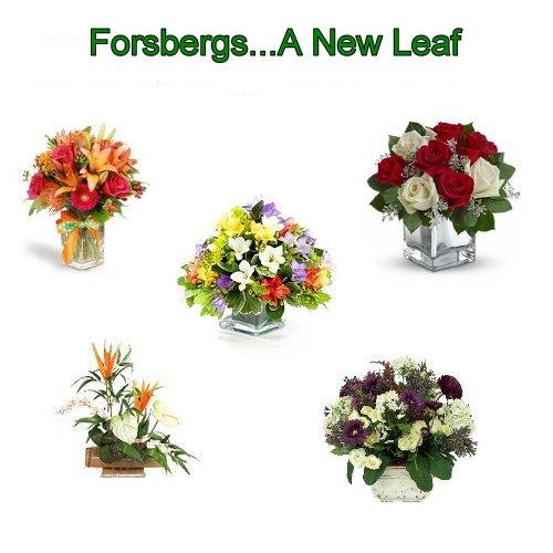 Forsberg Flowers $10 Certificates